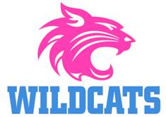 wildcat_pink-blue.jpg